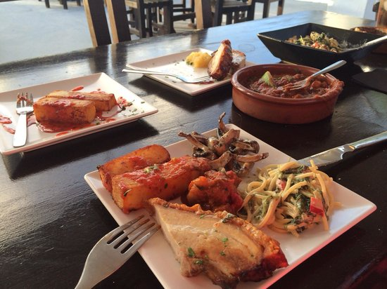 Tapas Restaurant & Lounge Bar : Lovely! Potato bravas, belly pork, Italian summer pasta, beef Tagine & garlic mushrooms!! Plenty