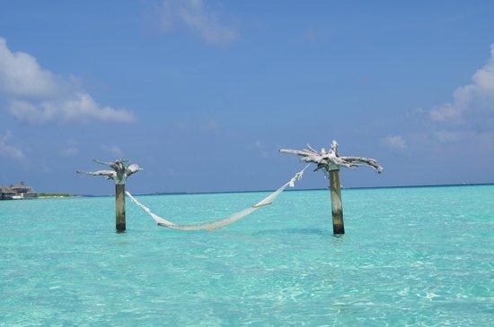 Gili Lankanfushi Maldives : hamak
