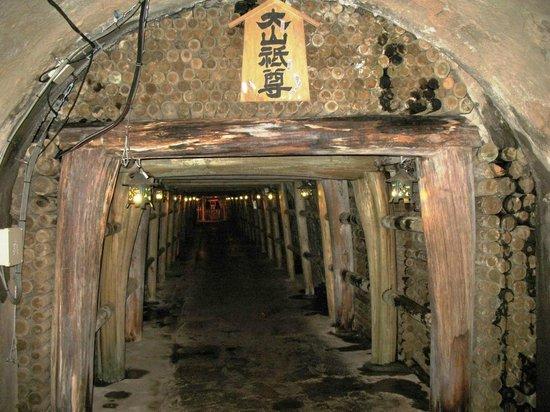 Toi Kinzan: Вход в шахту