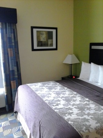 Days Inn & Suites Glenmont/albany: King Bed - Interior Room - May 13 2014