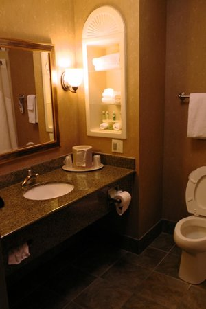 Holiday Inn Express Hotel & Suites Chattanooga-Ooltewah : Bad