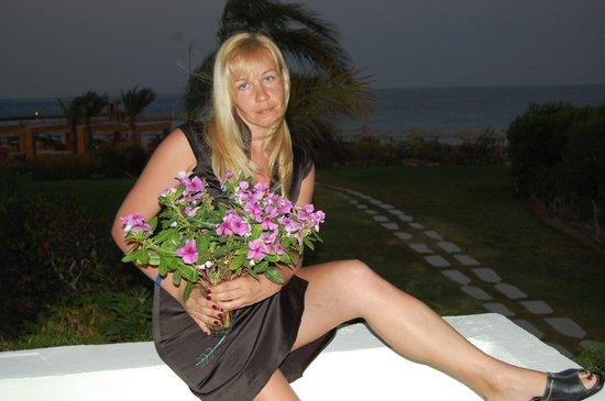 Mercure Hurghada Hotel: Балкон