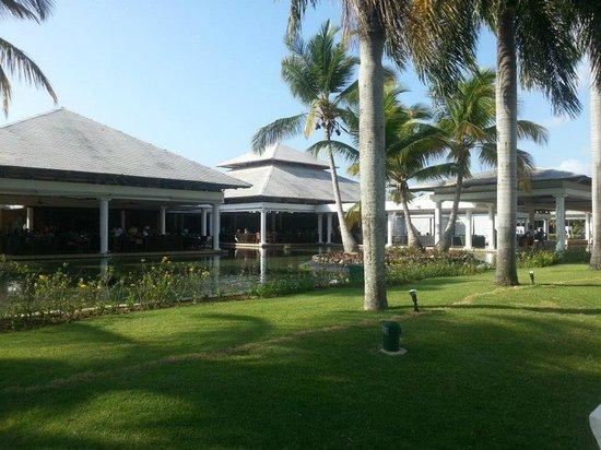 Catalonia Bavaro Beach, Casino & Golf Resort: Bufet Gran Caribe