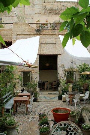 Riad Idrissy: The Ruined Garden