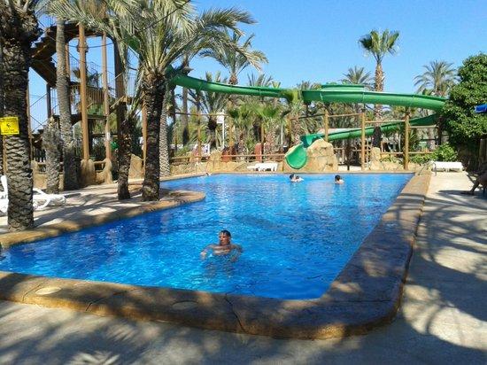 piscina de r o safari picture of rio safari elche elche