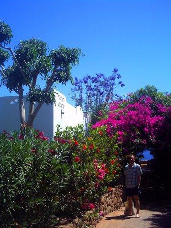 Domina Hotel & Resort Harem : Harem resort, walk to beach