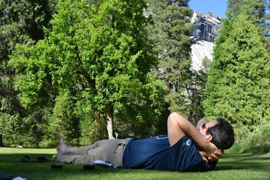 The Majestic Yosemite Hotel: Laying on lawn in back of hotel, facing valley wall