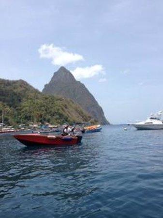 Simon Says Tours: Boat Trip