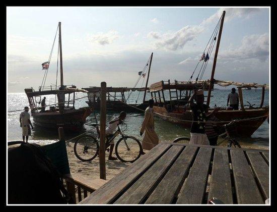 Livingstone Beach Restaurant: View from beach-side table