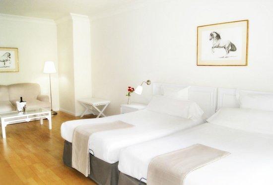 Hotel Jerez & Spa: Doble Superior