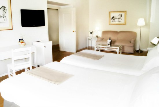 Hotel Jerez & Spa: Doble Superior