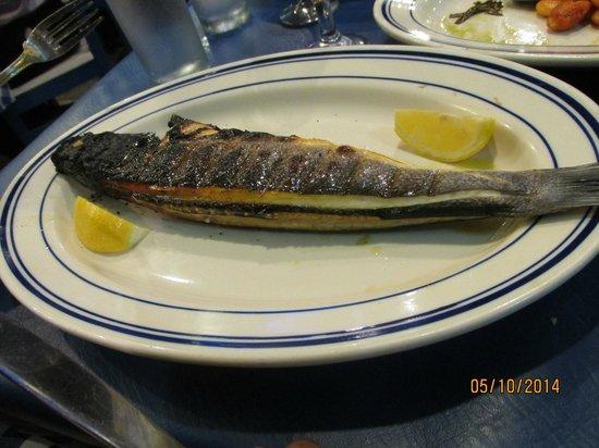 PITHARI TAVERNA: Charred Mediterranean Fish