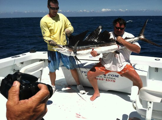 7 ft sailfish to end a great day foto de therapy iv for Deep sea fishing miami