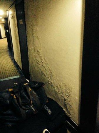 Centaur Hotel, IGI Airport: passageway