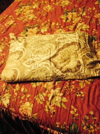 Biscuit Palace Guest House : Lumpy, nearly useless bed pillow