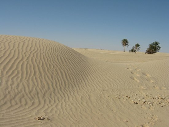 Sahara Desert : Сахара