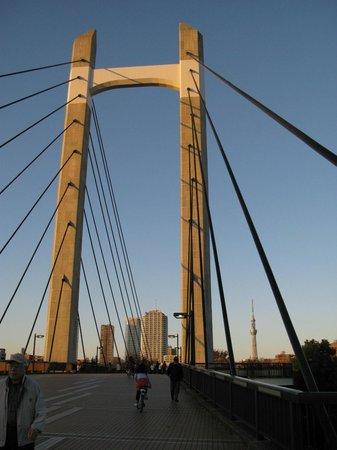 Kiba Park: Мост, который соединяетчасти парка