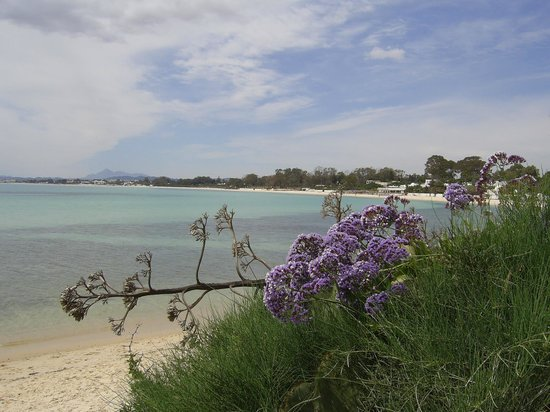 Hammamet Beach: пляж Хаммамет