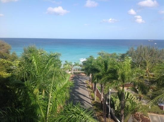 Hilton Barbados Resort: Harbour view