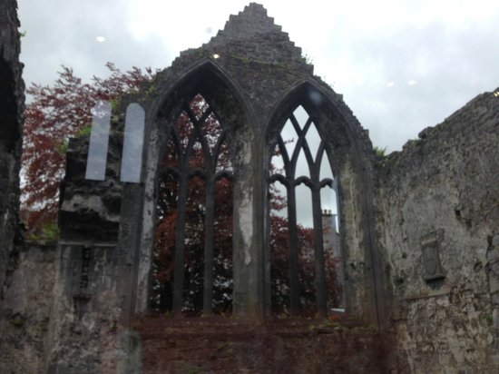 Ennis Walking Tours: The Friary