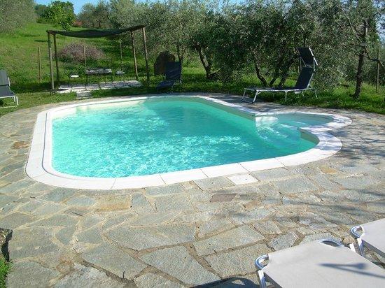 Agriturismo Il Castagnolino: Swimmingpool