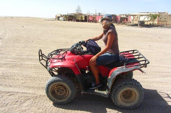 Sahara Desert : Quad