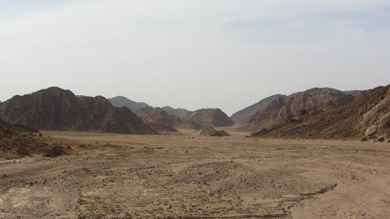 Sahara Desert : Desert