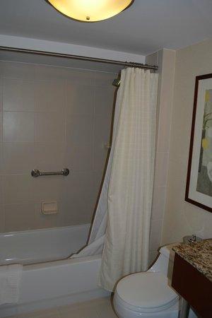 San Carlos Hotel: Baño principal