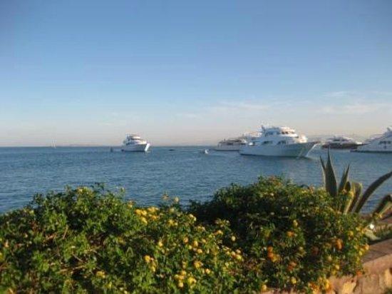 Hurghada Marriott Beach Resort : Вид на море