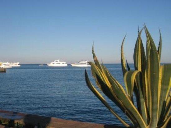 Hurghada Marriott Beach Resort : Корабли