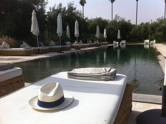 Hotel Les Cinq Djellabas : The pool