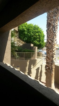 Best Western InnSuites Yuma Mall Hotel & Suites: Just outside our room