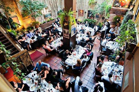 Courtyard picture of aroma mediterranean restaurant for Aroma mediterranean cuisine
