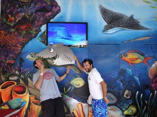 Megalodon Dive Center