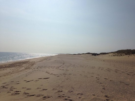Edgartown, MA: South beach state park