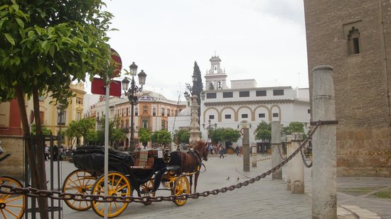 Hotel Boutique Casas de Santa Cruz : The Cathedral's Square