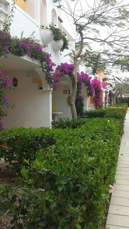 Cordial Green Golf: Apartments