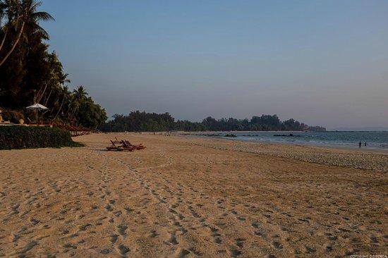 Amazing Ngapali Resort : Plage de l'hôtel