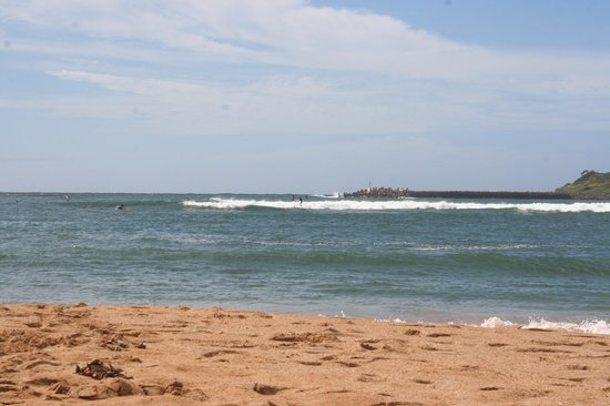 Banyan Harbor Resort: Kalapaki Beach and Surf