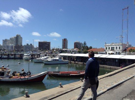 Hafen von Punta del Este: Marine Punta del Este_havn