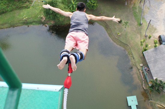 Jungle Bungy Jump: Shot taken by crew