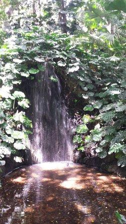 La Concepcion Jardin Botanico Historico de Malaga: Waterfall