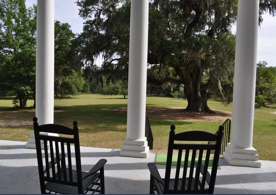 Hampton Plantation State Historic Site: view from the porch incl the grand oak