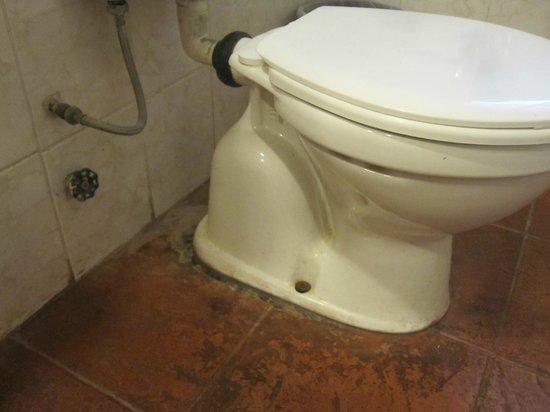 Hongos Azulejos Baño:Cascada de las Animas: Taza del baño sucia y con hongos