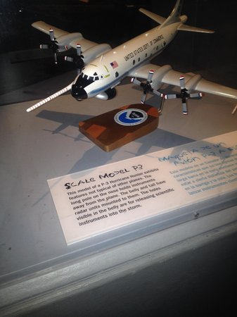 Patricia and Phillip Frost Museum of Science : P3 Scale Model