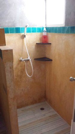 Dozy House: shower