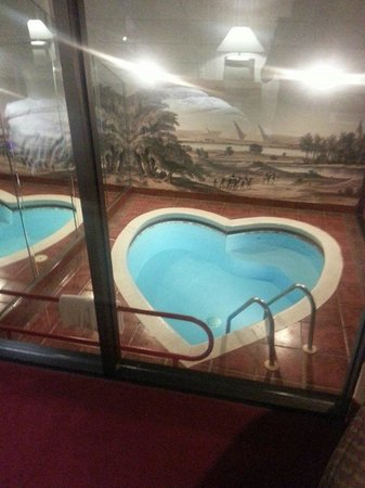 Cove Haven Resort: a picture of the pool from our bedroom...the pool in completely encased with glass