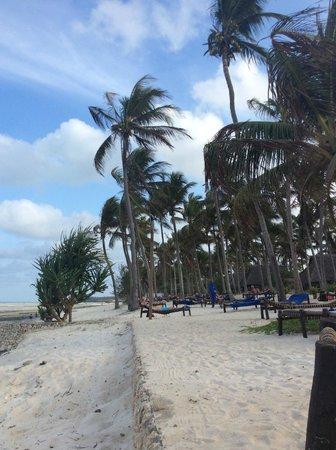 Karafuu Beach Resort and Spa: Stranden