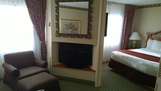 DoubleTree Suites by Hilton Hotel Nashville Airport: Tv living room