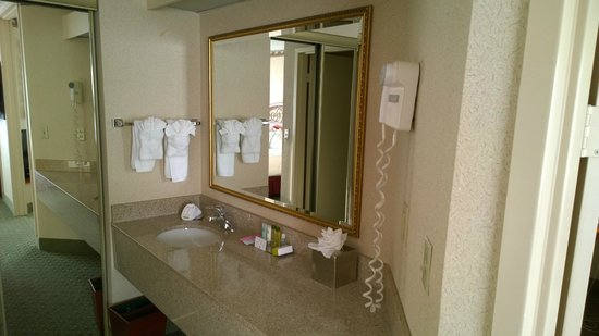 DoubleTree Suites by Hilton Hotel Nashville Airport: Sink area